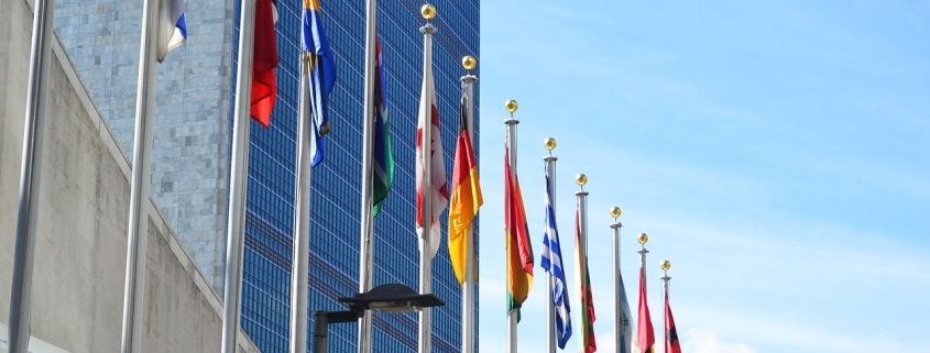 What is the role of the United Nations Secretariat