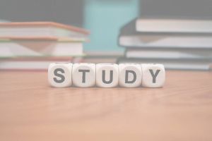 JC History Tuition Online - Study Notes and Exam Skills - H1 H2 History Tuition 2