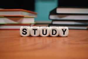 JC History Tuition Online - Study Notes and Exam Skills - H1 H2 History Tuition