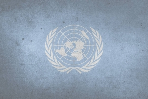 JC History Tuition Online - United Nations - H2 History Tuition 2